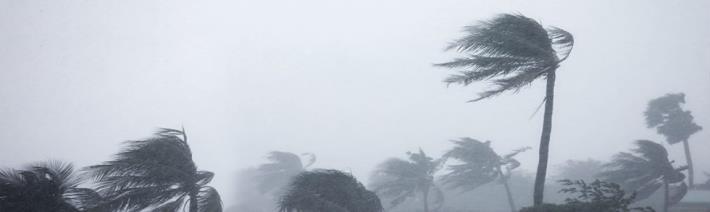 利奇馬颱風